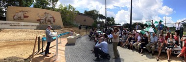 A panoramic shot of Friday's ribbon cutting for the Schreckengost pachyderms at the Cleveland Museum of Natural History. Donor Larry Sears spoke under a hot sun in front of roughly 80 guests.