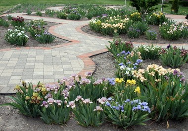 Touring the gardens at the Rockefeller Greenhouse is one of the best free deals in town.