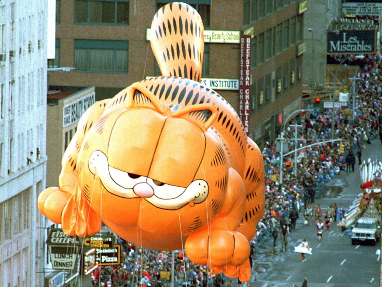 Is Garfield A Boy Or A Girl Or Neither How A Cartoon Cat S Gender Identity Launched A Wikipedia War Cleveland Com