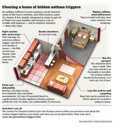 Asthma triggers in the home.