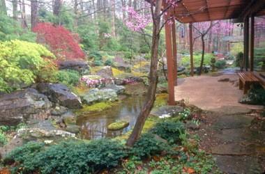 David Slawson's Japanese garden design incorporates a stream and patio in a small backyard in Fayetteville, Ark.