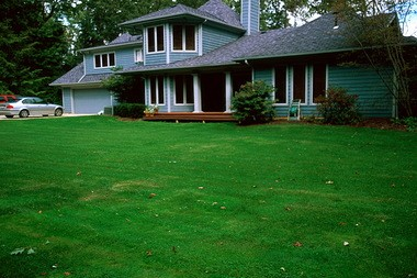 BEFORE: This Brecksville home had a sweeping lawn that the family wanted removed and replaced.