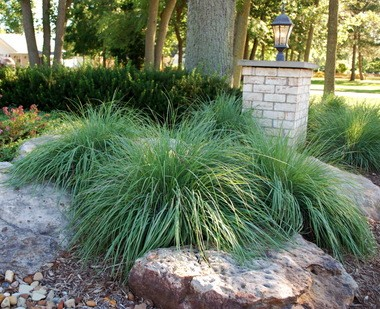 Large rocks, mulch and drought-tolerant native grasses such as little bluestem nicely supplant sections of lawn and add softness and texture.
