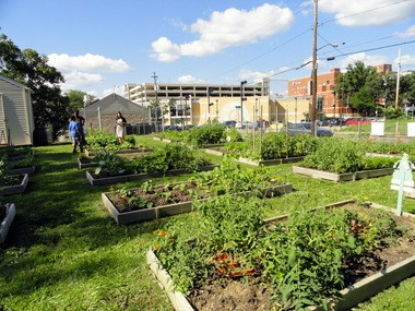 The Cuyahoga Land Bank encourages garden groups to turn empty lots into community gardens.
