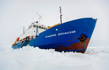 The MV Akademik Shokalskiy, jammed securely in the ice.