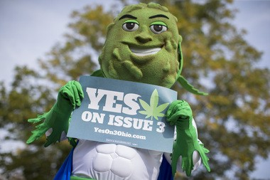 ResponsibleOhio, the political action committee behind Ohio's failed marijuana initiative, was criticized by marijuana advocates for creating a marijuana mascot Buddie.