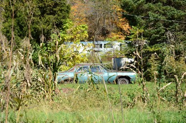 A rusted, old car sits in the tall grass on the side of the road in Caldwell, Ohio.
