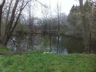 The pond where a body was found in Olmsted Township.