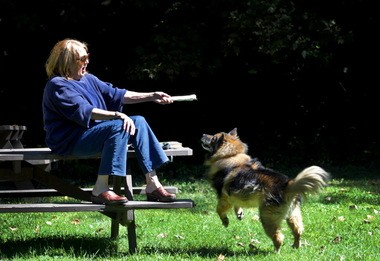Cori Seifert of Lyndhurst and her dog, Jasper, play in the sun at the Quarry Picnic Area of Cleveland Metroparks Euclid Creek Reservation on Tuesday, September 17, 2013.