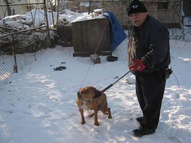 State law protects pets from suffering in a winter storm