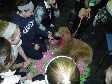 Penny, a certified therapy dog, is surrounded by Magnificat High School students during a recent visit meant to ease the stress of taking exams. The standard poodle is owned by the Kitzel family of Westlake.