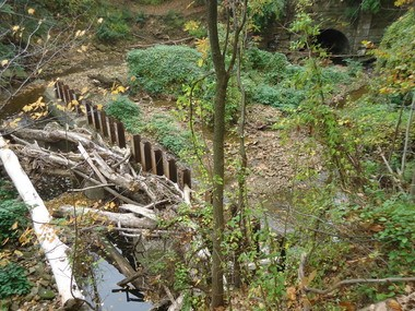 Accumulation of sediment and trees has led to a delta of debris collected at this trash rack on Doan Brook, creating an alluvial plain on its way under the Martin Luther King Drive bridge (at top right).