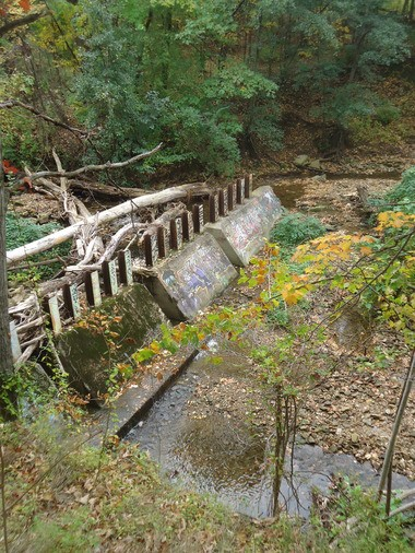 The view from the North Park Boulevard side of the Doan Brook gorge shows the back-up of debris at a trash rack dating back to 1975, and the creekbed diversion that has occurred.