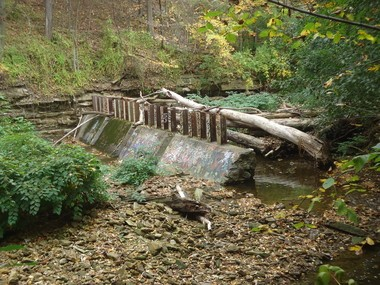 The failure and decay of a debris rack in Doan Brook gorge is clear from the Fairhill Road/Martin Luther King Drive side of the ravine.