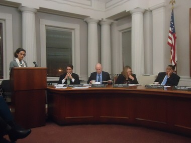 Dr. Kathy Smachlo addresses Shaker Heights City Council on Oct. 24 about a proposed ban on the use of synthetic lawn pesticides on all city-owned grounds.