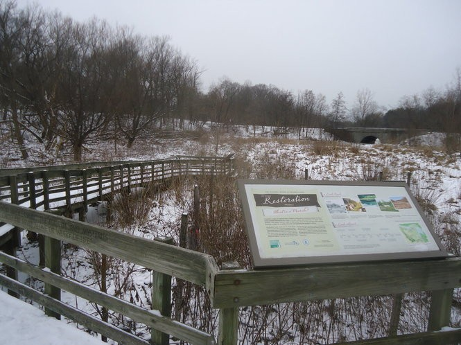 From the planks of the All People's Trail. a wintertime view of the marshlands outside the Nature Center at Shaker Lakes, looking out toward North Woodland Road.