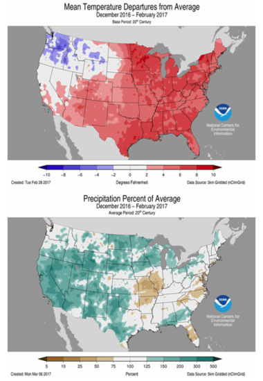 Winter 2016/2017 temperature and precipitation analysis.
