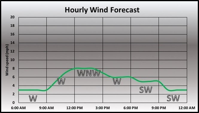 Wind speed and direction forecast.