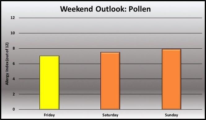 Pollen forecast.