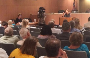Board attorney Paula Yancey speaks during the Aug. 17, 2015 board meeting.
