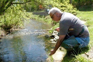 A fisherman releases a fish he caught at the Lopatcong creek near South Main Street in Phillipsburg.