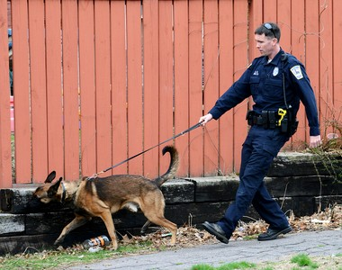 Ryker and Patrolman Matthew Welch on the beat: The pair investigated a report of shots fired near the intersection of Cabot and Walnut streets in April.