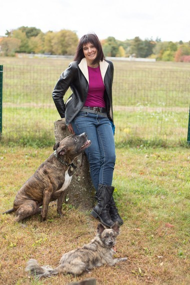 Jill Rose has 30 years of experience in training and evaluating thousands of dogs of all breeds and temperaments.