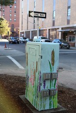 A painted utility box.