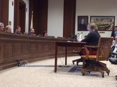State Sens. Anne Gobi and Eric Lesser testify before the Legislature's Transportation Committee on Feb. 24, 2016 about a bill establishing Springfield-Boston passenger rail.