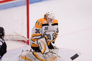 Ben Meisner made 34 saves in his first pro game with the Utah Grizzlies of the ECHL.