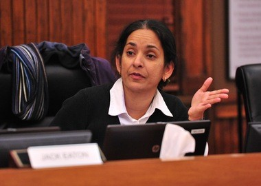 Council Member Sumi Kailasapathy, D-1st Ward, speaks at the Ann Arbor City Council's meeting on Dec. 1, 2014.