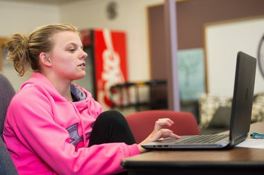 Bangor Township Public School sophomore Haley Rosebrock focuses on her web design class work Wednesday, May 6, at the Bangor Edison Administration Building, 3359 E. Midland Road in Bangor Township. Rosebrock is enrolled in the district's newest educational program, Bangor Township Virtual School.