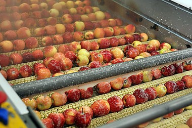 Apples undergo washing at a Fruit Ridge processing facility.