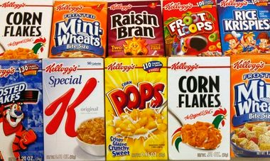 Kellogg is the world's leading cereal company; second largest producer of cookies, crackers and savory snacks; and a leading North American frozen foods company.