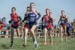 Kiehl Smith, a junior from Jonesville, Mich., was Albion's second runner to finish