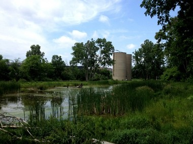Two silos sit unused at Spring Grove, a wildlife area near downtown Flint. The Flint Public Art Project is holding a contest for designers and artists to install designs that will show how the silos could be repurposed.