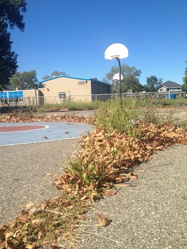 A wall of weeds and leaves defends center court Thursday, Sept. 5, on the basketball court at Campau Park in Grand Rapids.