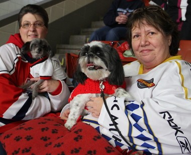 Punk, a 7-year-old Chinese crested hairless, with owner Paula Striebel, of Vicksburg, and Katie, a 5-year-old shih-tzu, with owner Pam Tucker, of Portage, were among the 65 dogs at the K-Wings game Wednesday night.