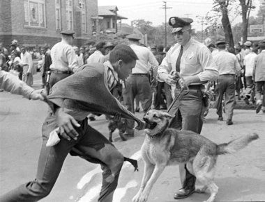 A policeman uses a police dog to control a civil rights demonstrator in Birmingham, Ala., May 3, 1963. The use of police dogs and fire hoses to quell civil rights demonstrations was not unusual in Birmingham in the 1960s.