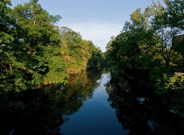 DNR stocks Red Cedar River on Michigan State campus with