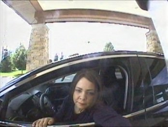 A purse containing checks and identification was stolen from a vehicle in Sterling Heights on July 26, and police on Tuesday released an image of a woman trying to cash one of the checks for $2,500.