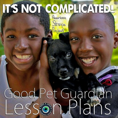 The World Animal Awareness Society is focussed on education kids on Detroit and surround areas on how to be good pet owners. The organization estimates there are 1,000 stray dogs in the city.