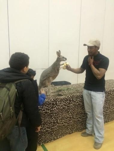 Exotic Zoo owner Javon Stacks