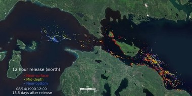 Screenshot from a University of Michigan simulation showing how oil might spread though the Great Lakes if Enbridge's Line 5 under the Straits of Mackinac were to rupture.
