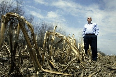 John A. Rapanos standing among harvested corn stalks on his Midland property, April 16, 2004. (File photo)