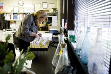 Sue Foune, water plant manager in Kalamazoo, checks bacteria samples in this 2008 file photo.