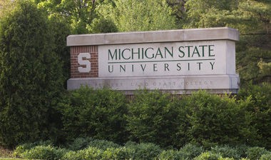 Search salaries for all Michigan State University employees