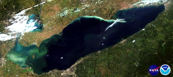 The Microcystis cyanobacteria bloom in western Lake Erie on Sept. 20, 2016.