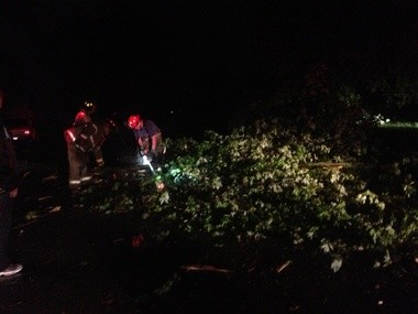 Emergency workers cut downed trees on Rex Avenue in the Beecher area.
