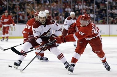 Detroit Red Wings center Joakim Andersson was a fixture in the lineup in 2013 after being called up from Grand Rapids.